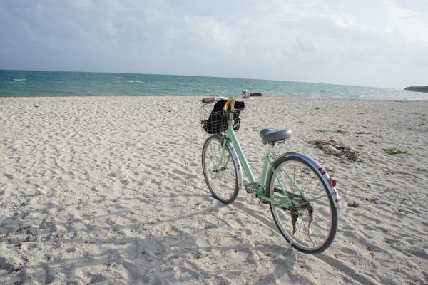竹富島 サイクリング