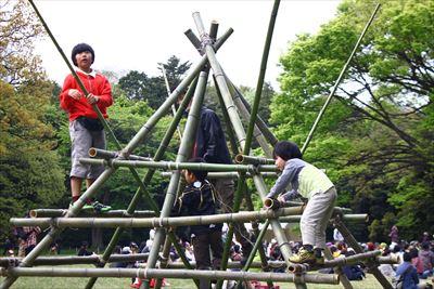 竹のジャングルジム
