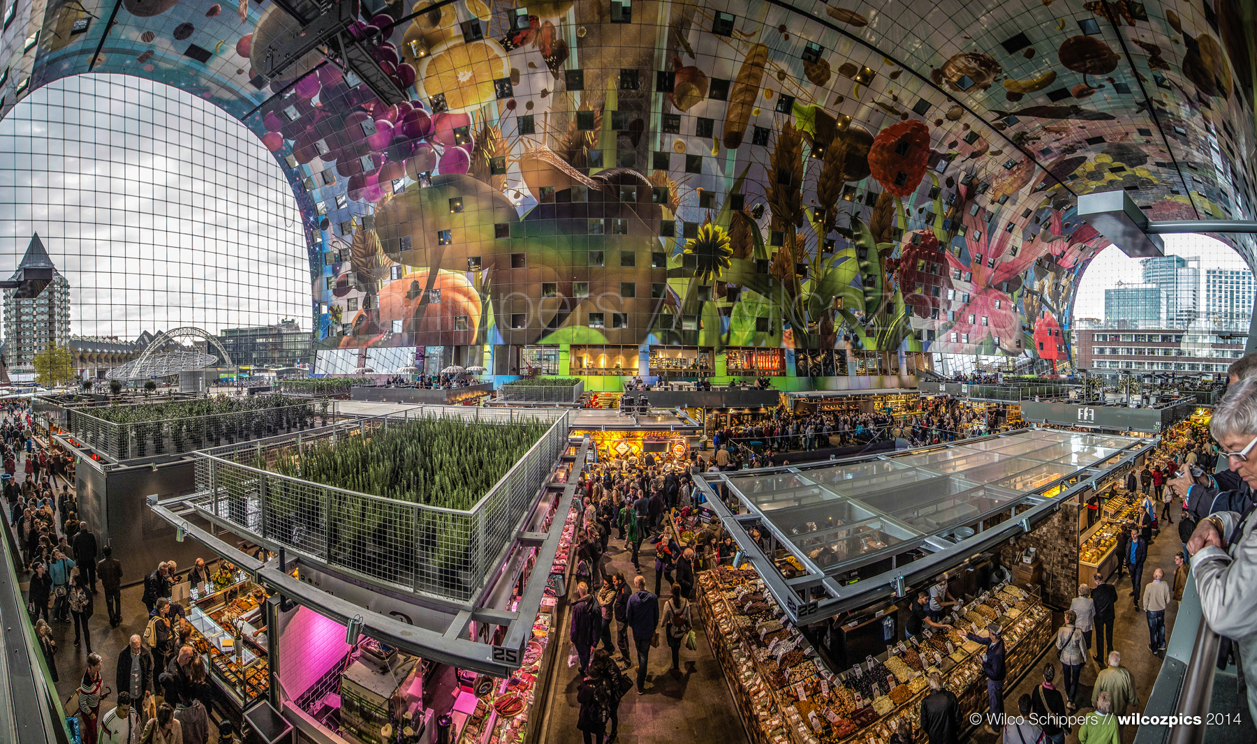 【特集】絵本のような国、オランダの人気観光スポット5選